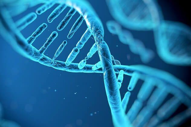 Где и как сделать анализ ДНК на отцовство?