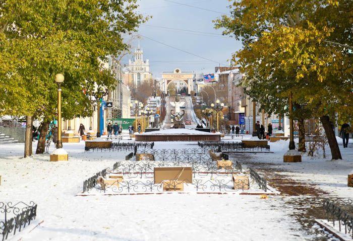 Улан удэ картинки зимой, тему животные